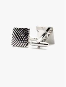 Silver Zebra Stripes